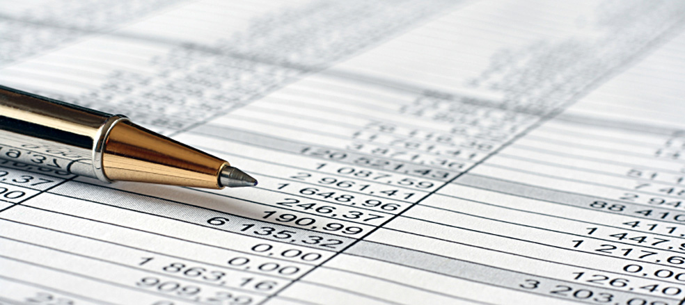 professional preparation and filing of annual financial statements